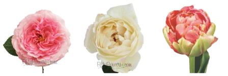 Mass Flowers for my DIY Wedding Flowers