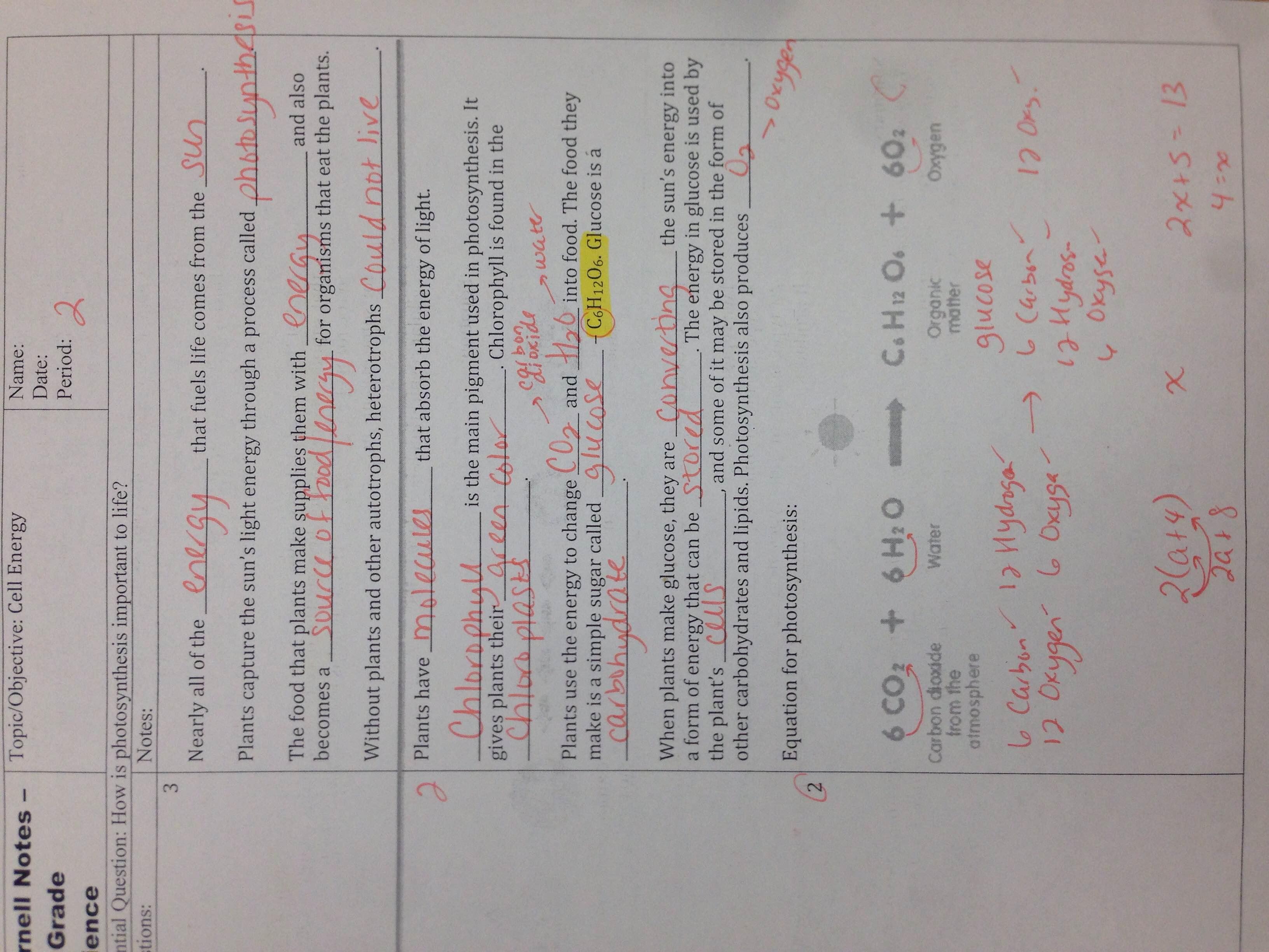 Mrs Garden S 7th Grade Science