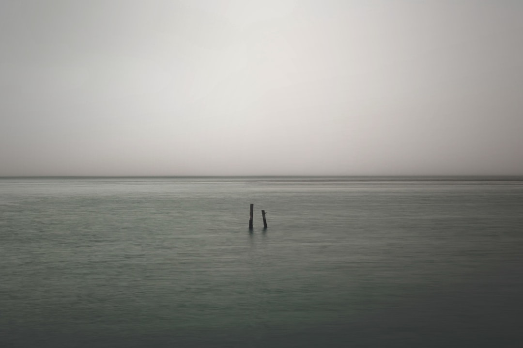 A photograph of a grey seascape with two single pieces of timber sticking out of the water - Robin Williams, Depression & Me - Mrs H's favourite things