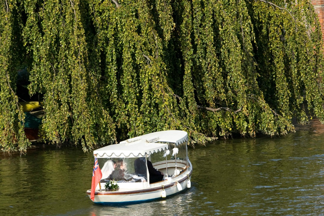 A photograph of a bride and groom on a small boat on the Thames with a huge weeping willow in the background - Nine Reason Why I Love You - Mrs H's favourite things