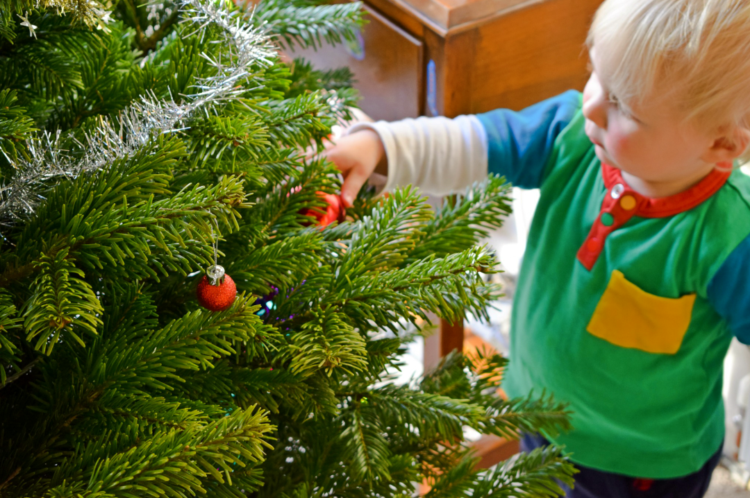 A photograph of a little boy standing by a Christmas tree looking at and touching the baubles on the Christmas tree - Photographs of decorating our Christmas tree - Our Christmas Tree Day - Mrs H's favourite things