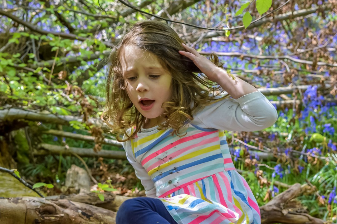 A photograph of a little girl on a summer day climbing on some fallen trees in a wood filled with bluebells - Five Reasons I'm Looking Forward to Summer - Mrs H's favourite things