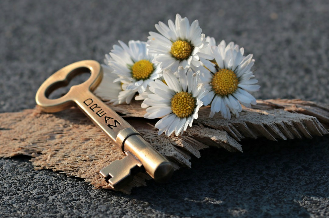 A photograph of a house key and a bunch of daisies - My Advice For Anyone Renting A Property In 2018 - Mrs H's favourite things