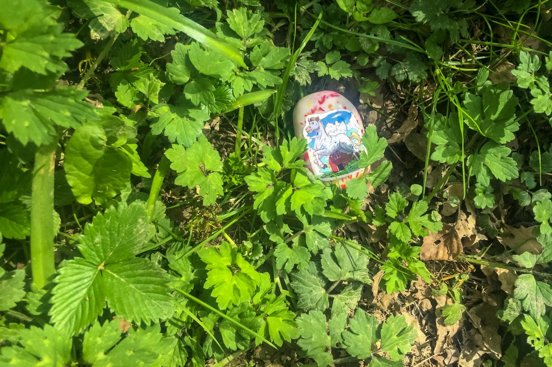 Hiding our #Mardlesrocks (Kindness Rocks decorated with Mardle Stickets) at Pepenbury Farm - Our Weekend Happy 13: Country Parks, Woodland Walks and a Party - Mrs H's Favourite Things