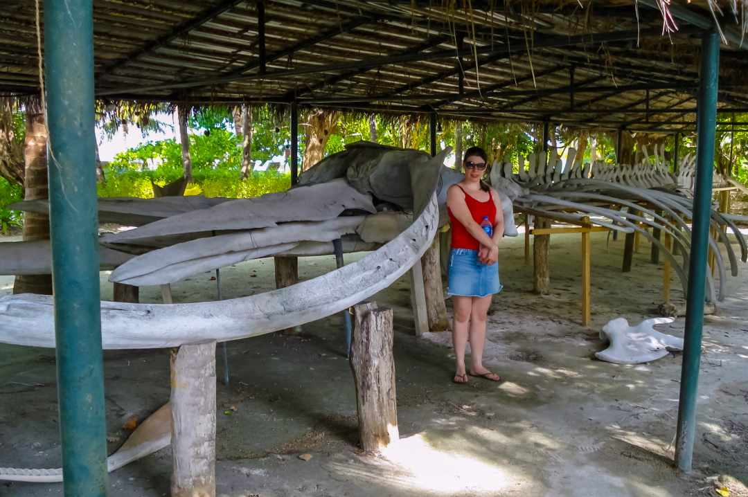 The photograph of a woman standing in front of a blue whale skeleton on a beach on the Maldivian island of Meeru - My Favourite Holiday - Our Honeymoon In The Maldives - Mrs H's favourite things