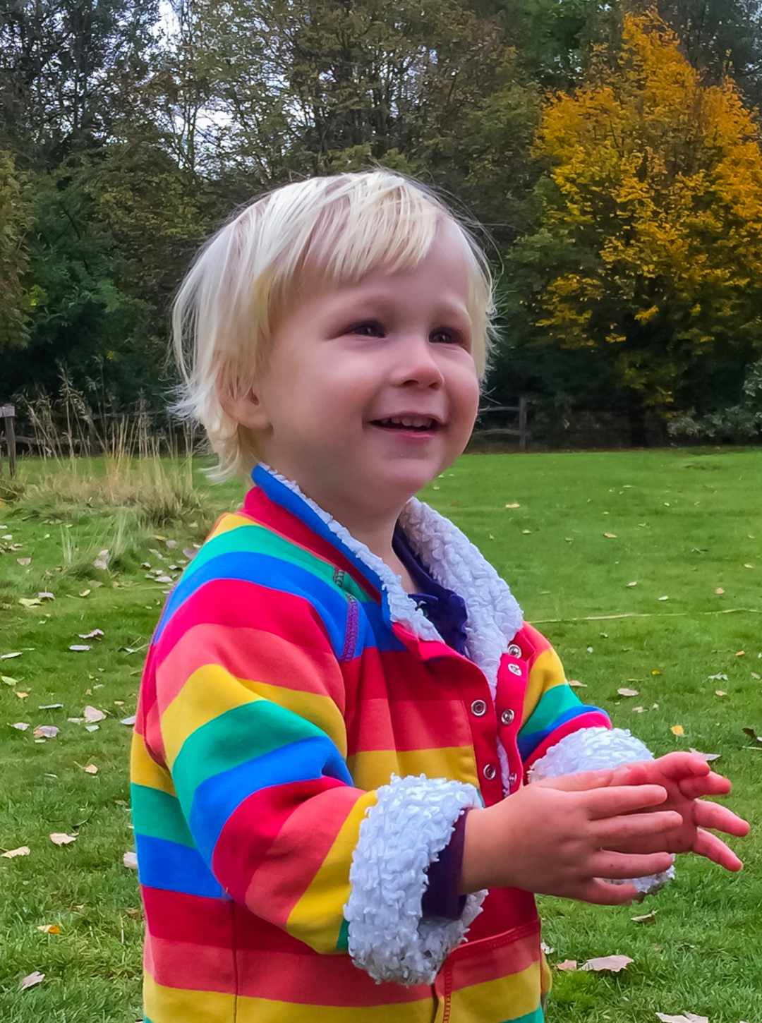 A photograph of a little boy at Westonbirt Arboretum - Finding Happiness And Chasing Rainbows - Mrs H's Favourite things