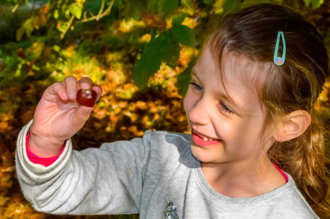 A photograph of a little girl with a conker at Westonbirt Arboretum - Finding Happiness And Chasing Rainbows - Mrs H's Favourite things