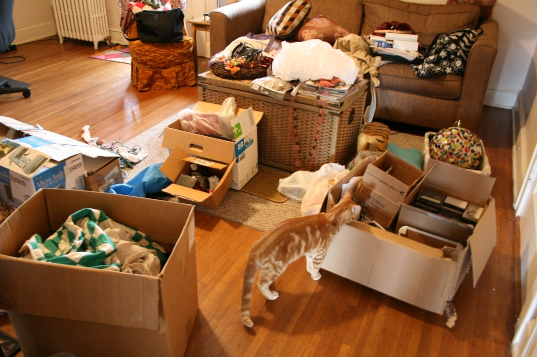 A photograph of a living room full of boxes in the middle of decluttering - 3 Things People Get Wrong About Decluttering - Mrs H's favourite things
