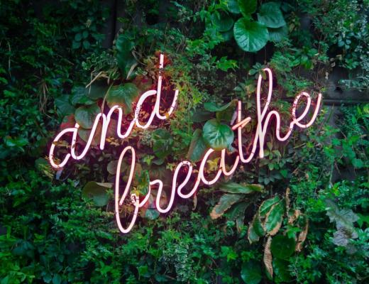 "A photograph of an ""and breathe"" neon sign on lots of greenery - 5 Ways To Boost Your Wellbeing - Mrs H's favourite things"