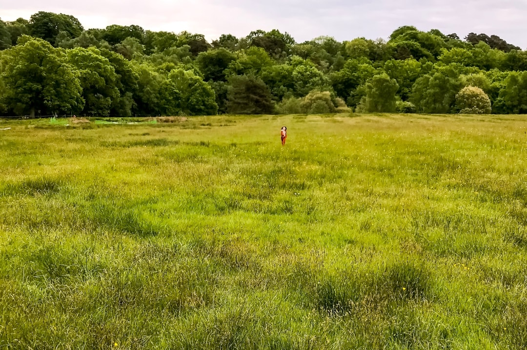 A photograph of a little girl running in a meadow - Elderflower Festival: The Perfect Family Festival - Part One - Mrs H's favourite things