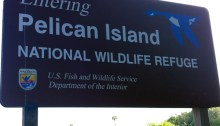 The southern end of Pelican Island National Wildlife Refuge. More at http://mrsjennifercook.com