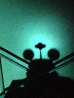 Caught a hidden Mickey in Star Tours!