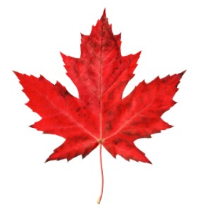 Maple-Leaf[1]
