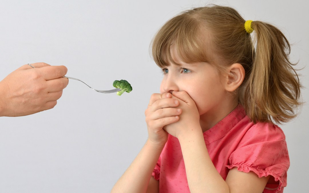 Help for picky eaters| Stop the food fight