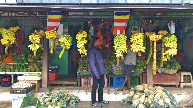 斯里蘭卡 Sri Lanka