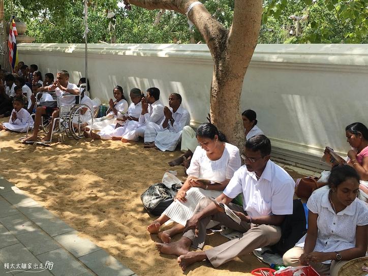 斯里蘭卡 Sri Maha Bodhi