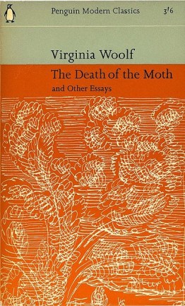 the death of the moth