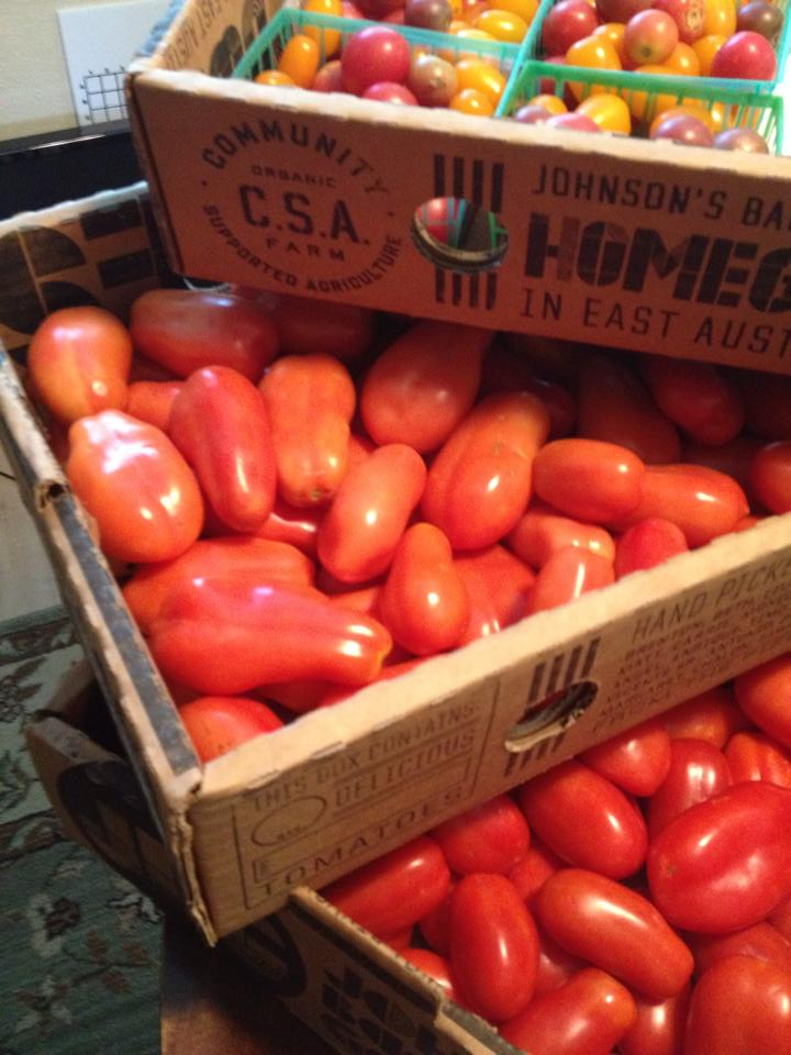 Three boxes of tomatoes from Johnson's Backyard Garden