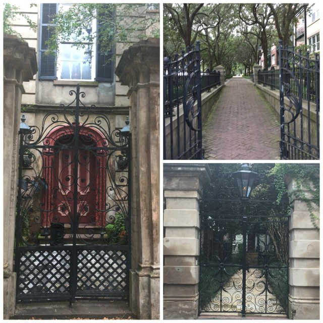 Some of my favorite examples of Charleston's trademark iron-work gates.