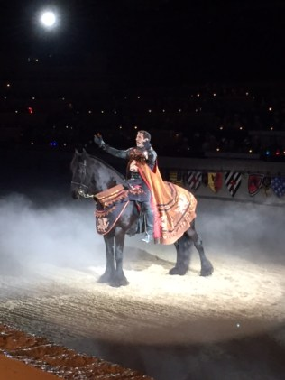 medieval times horse show