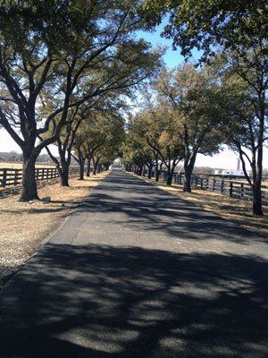 Driveway up to Southfork Ranch.