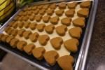 Peanut Butter Pumpkin Oat Dog Treats