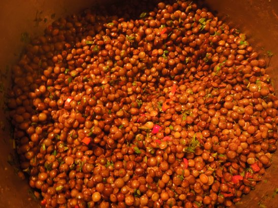 Image of cooked lentils dressed with oil and vinegar, herbs and chilli