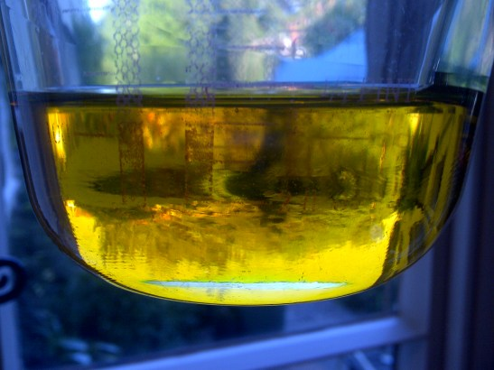 Image of a glass jug of rapeseed oil held up to the light