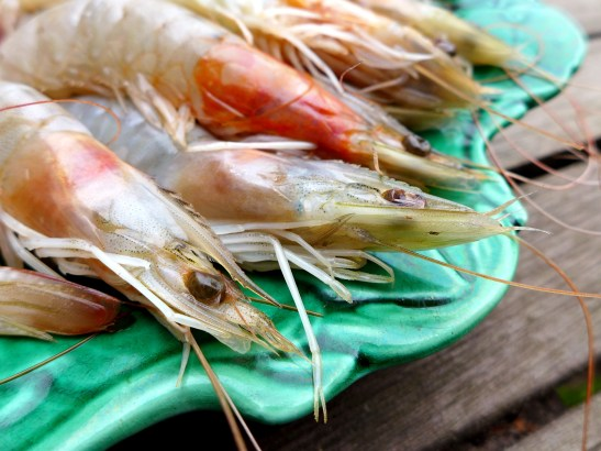Image of raw prawns