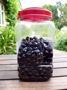 Image of giant jar of olives