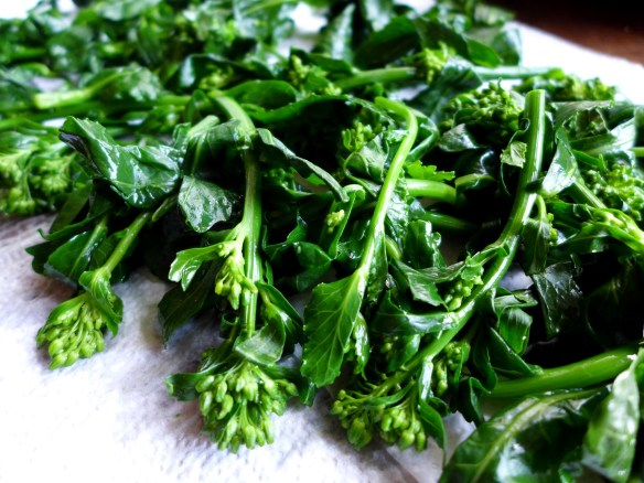 Image of blanched cabbage flower sprouts