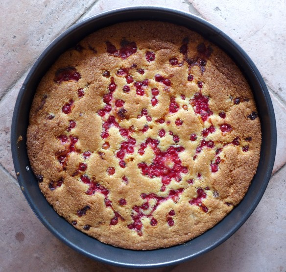 Image of cooked cake