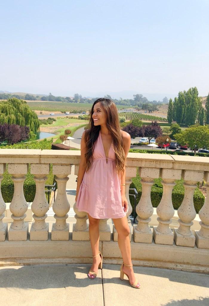 Pink Deep V Cut Mini Dress