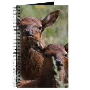 Baby Elk Calves Journal