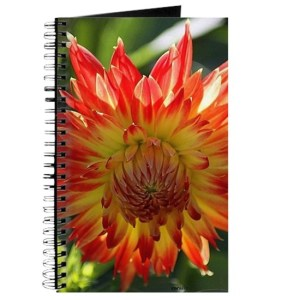 Fire In The Sky dahlia flower 096 Journal