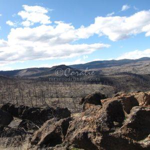 Hiking in Oregon 119