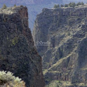 canyon landscape 166 Print Download
