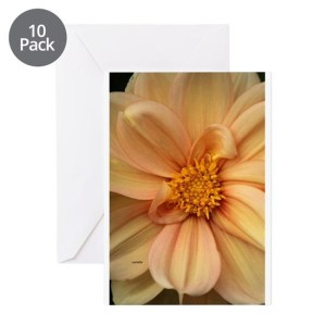Colorful Dahlia 429 Greeting Cards Pack of 10
