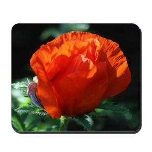 Bright Orange Poppy Flower Bud Mousepad