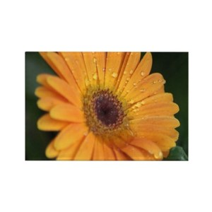 Chrysanthemum Flower Rectangle Refrigerator Magnet