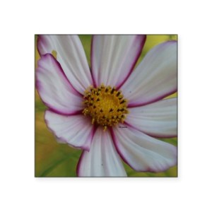 Colorful Bloom in the Flower Square Sticker 3″ x 3″
