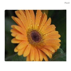 Colorful Chrysanthemum Flower Throw Blanket