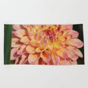 Colors Of The Dahlia Flower Beach Towel