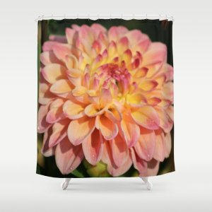 Colors Of The Dahlia Flower Shower Curtain