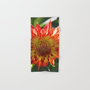 Fire In The Sky dahlia flower 096 Hand & Bath Towel