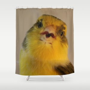 Singing Canary Shower Curtain