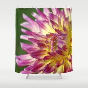 flashy dahlia flower Shower Curtain