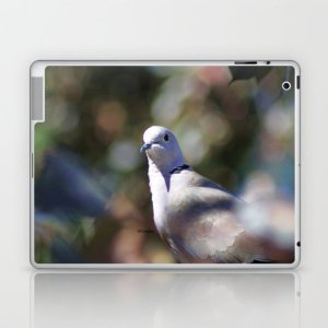 portrait of a dove Laptop & iPad Skin