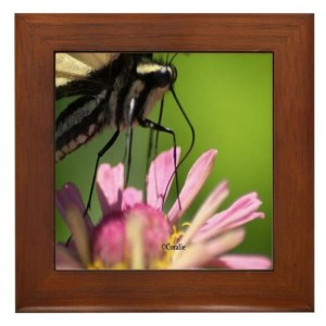 Colorful Yellow Swallowtail Butterfly Framed Tile