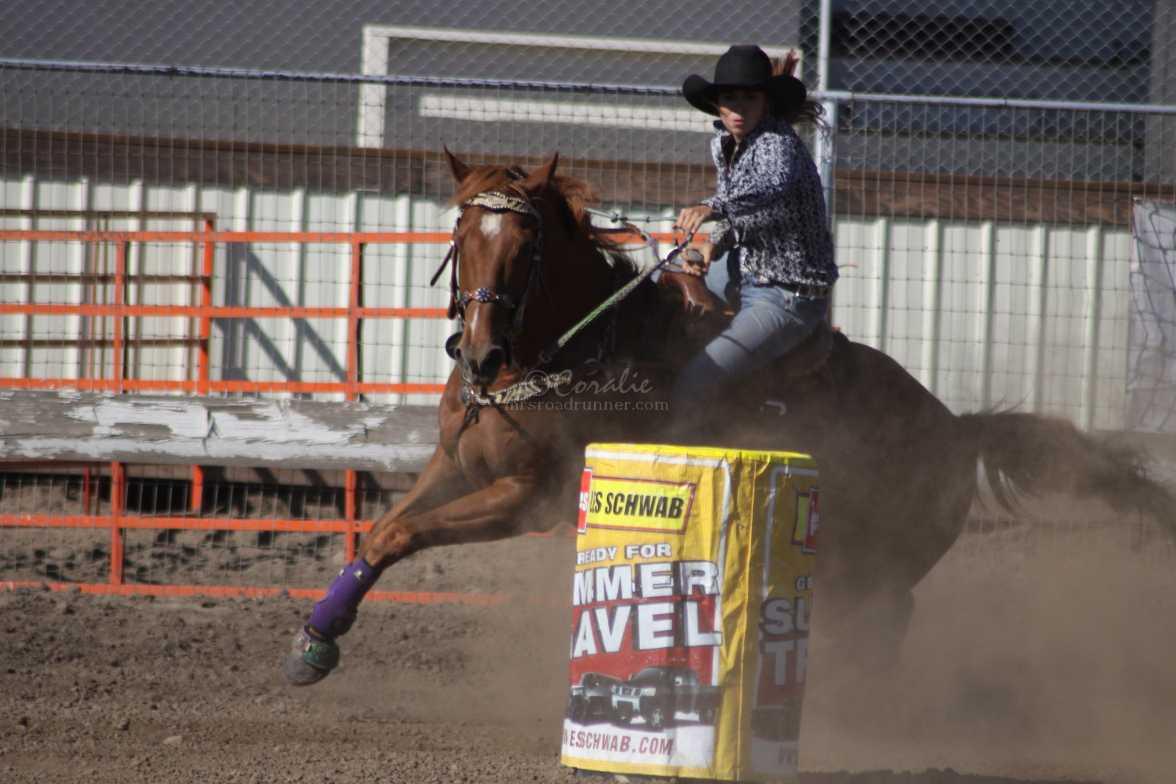 barrel racing rodeo 2346